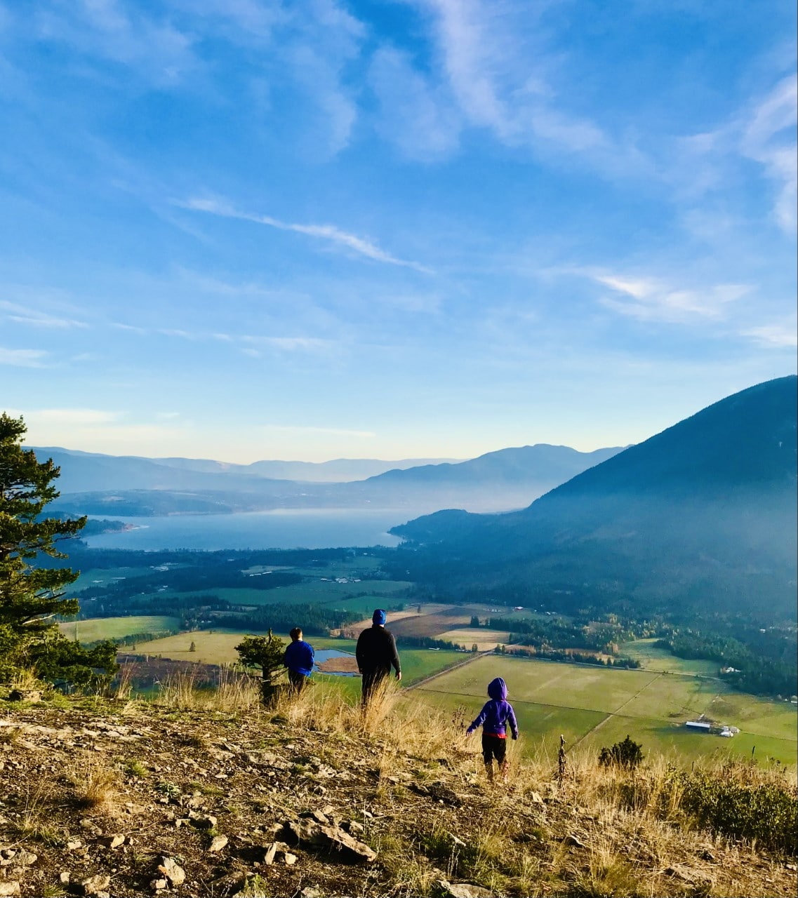 Image 2 Tappen Bluffs Trail looking out over Tappen Bay, Tappen Valley and Salmon Arm